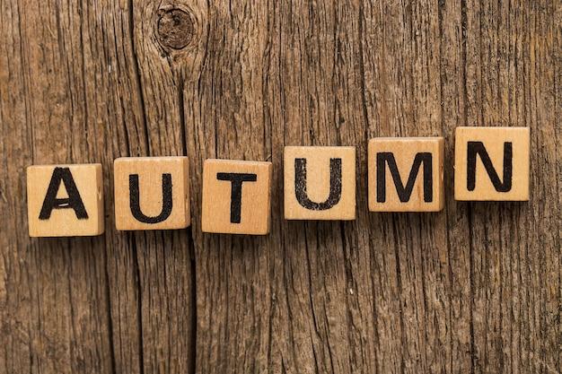 秋の言葉でテーブルの上のおもちゃのレンガ