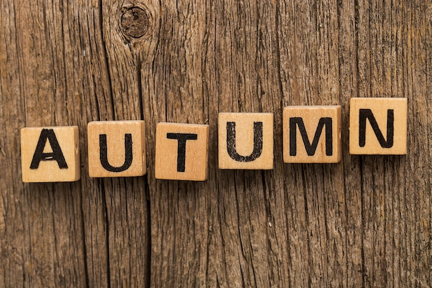 Toy bricks on the table with word autumn
