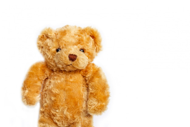 Toy brown bear on white. copy space
