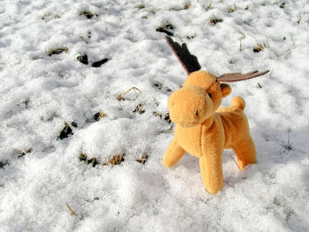 Toy deed in real snow