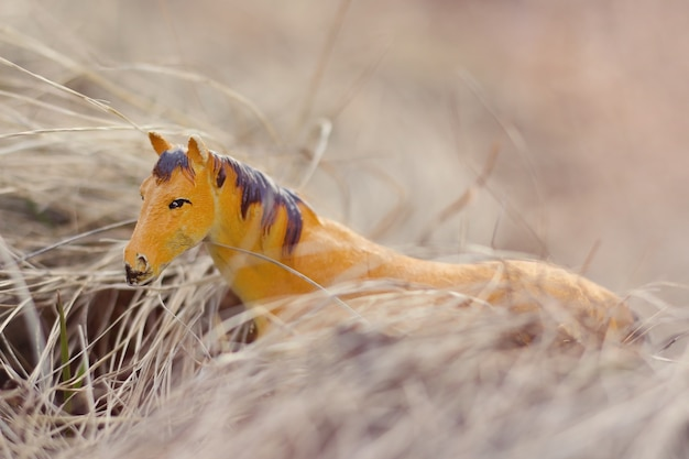Toy horse in nature photographed as real among the dry grass like haystacks
