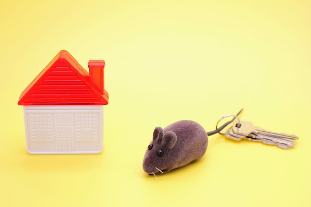 Toy mouse-a symbol of the new year, next to a plastic toy house and real keys to the house.