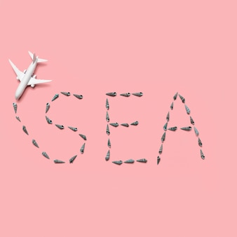 Toy plane and airline in form of word sea