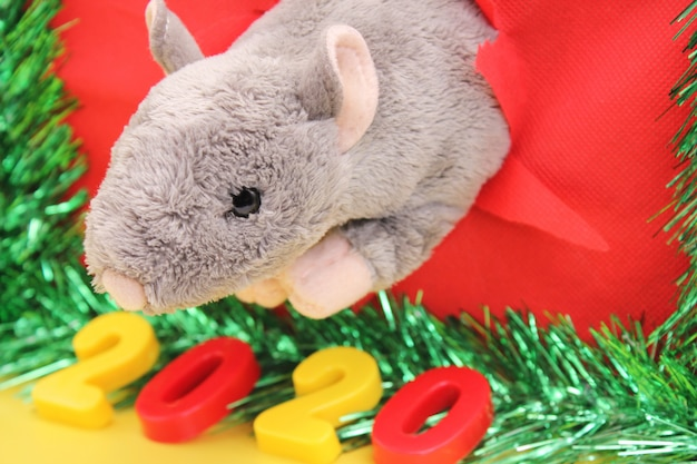Toy rat in a ragged hole for chinese happy new year 2020