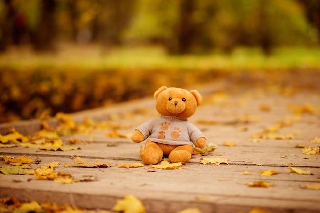 おもちゃのテディベアは木製の橋の上に座っています。多くの秋のカエデの葉が地面に横たわっています