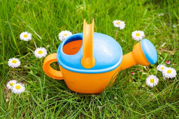 Toy watering can on the background of daisies