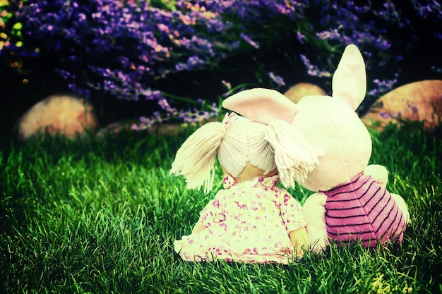 草の上に抱きしめるおもちゃ