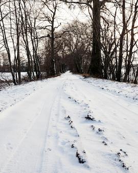 Следы машины на почве в лесу, покрытые белым снегом во время зимних снегопадов, крупный план