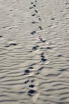 砂の中の人間の足跡の追跡、選択的な焦点