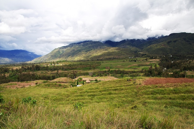 The tracking in valley of wamena, papua, indonesia