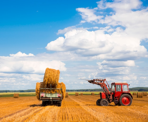 Tractor carrying hay