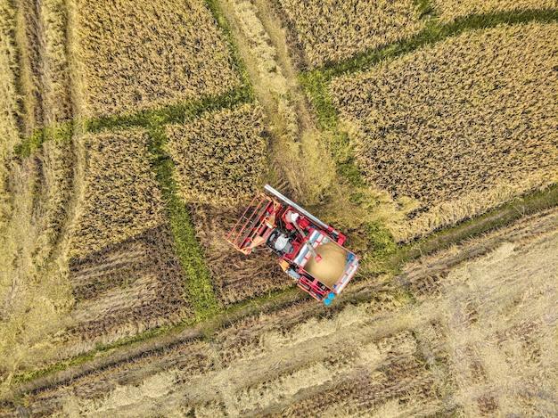 Трактор на рисовой ферме в период уборки урожая