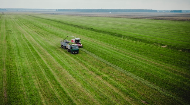 Tractor mows the grass on a green field aerial view