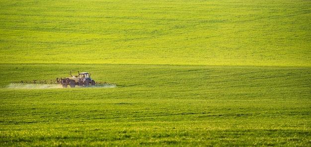 Tractor spraying pesticides on field with sprayer at summer