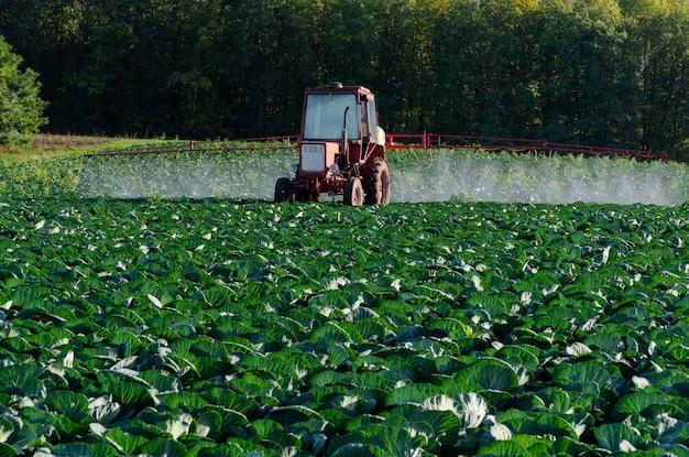 Трактор распыляет химию и пестициды на поле фермы с овощами