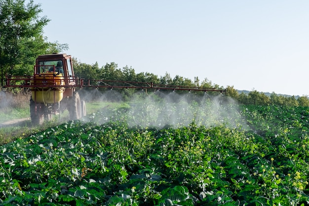Tractor sprays chemistry and pesticides to a farm's field with vegetables