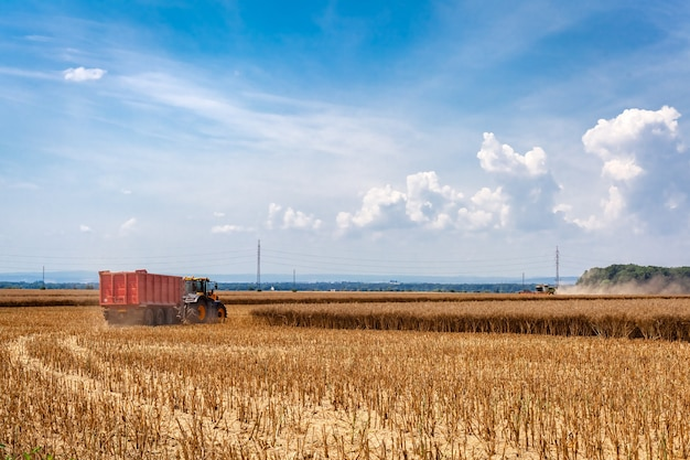 Tractor with a siding in a field during grain harvesting.
