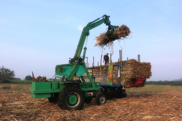 Tractors clamping arm is dispatched sugarcane truck