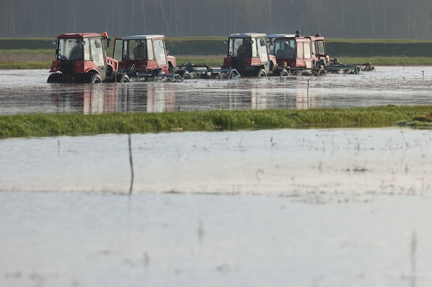 Tractors threshed the bushes of cranberries during a harvest at the farm