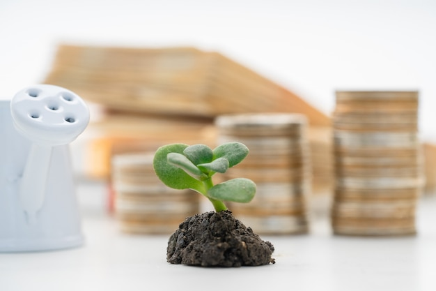 Trading financial and investment concept of growing.