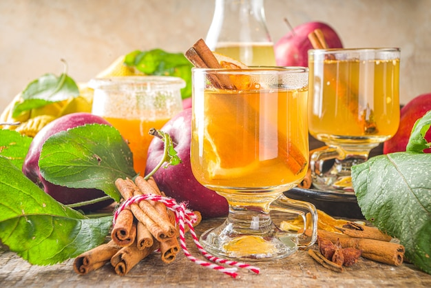 전통적인 가을 겨울 알코올 음료. 뜨겁고 매운 사과 사이다.