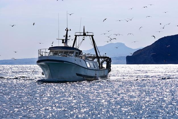 Традиционная рыбацкая лодка с чайками на море