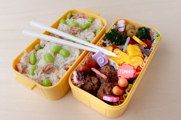 Traditional homemade bento box with rice, meat, egg, fish, vegetables and grains