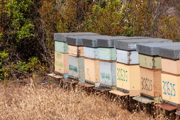 Traditional honeycomb beehives crates
