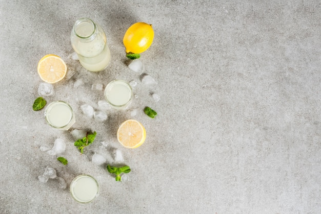 Traditional italian alcoholic homemade beverage, lemon liqueur limoncello with fresh citrus, ice and mint, on grey stone table,  top view