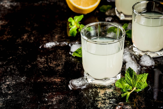 Traditional italian alcoholic limoncello with fresh citrus, ice and mint