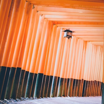 Traditional japanese lamp in walking path row of torii gates at