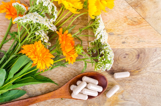 Traditional medicine concept, medicinal plants and herbal capsules