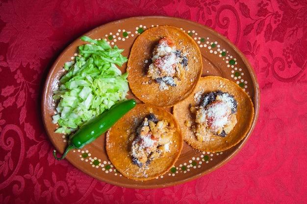 伝統的なメキシコ料理。サンルイスポトシのリオベルデ産のリオヴェルデンセエンチラーダ