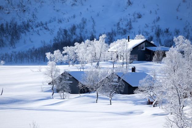 전통적인 노르웨이 목조 주택과 멀리 산. 로포텐 제도. 노르웨이. 세계 여행