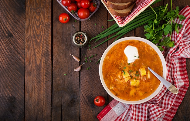 Traditional russian soup with cabbage