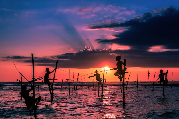 Traditional stilt fisherman in sri lanka