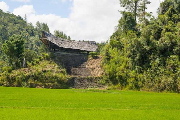 Traditional toraja village in idyllic rural landscape