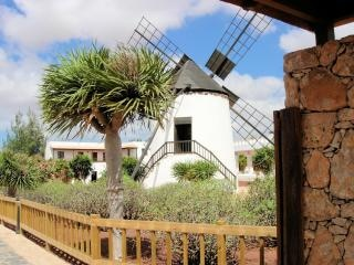Traditional windmill in fuerteventura  sunny