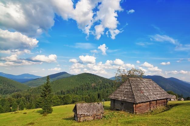 Традиционный деревянный дом в горах и лесу. в карпатах.