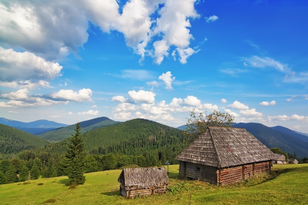 Traditional wooden house in the mountains and forest. in the carpathians.