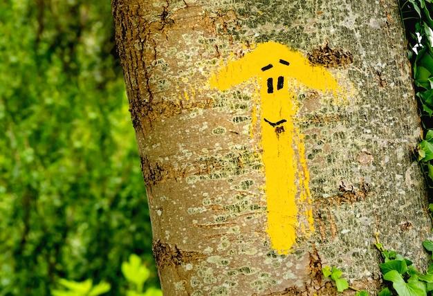 Традиционная желтая стрелка нарисована по дороге. указатель для паломников на пути святого иакова, камино-де-сантьяго-де-компостела, испания