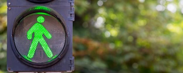 木の背景に緑色の信号機_