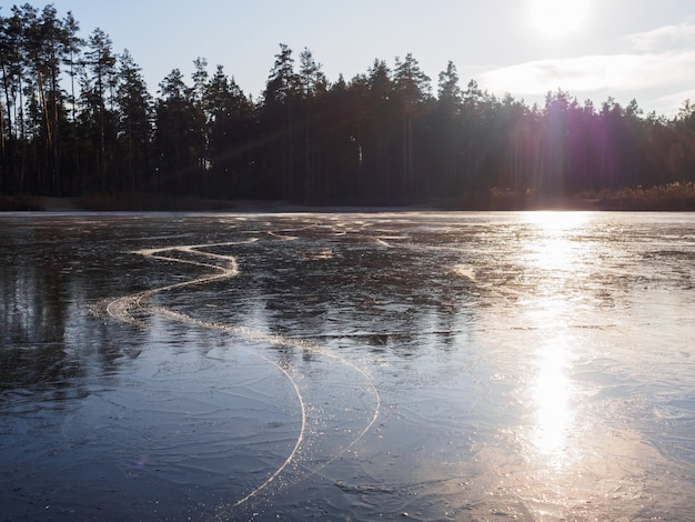 Trail of skates on a frozen forest lake in winter at sunset
