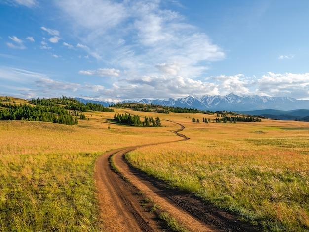 山を通り抜けます。登山道をハイキングします。高地の草の間の岩だらけの小道のある明るい大気のアルプスの風景。山腹を登る道。