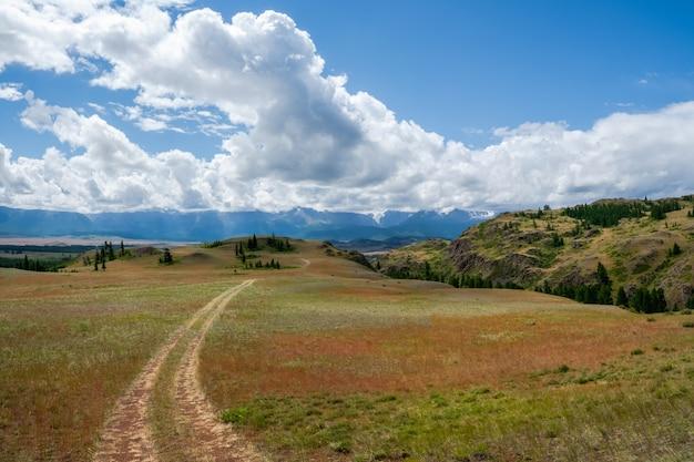 山を通り抜けます。登山道をハイキングします。高地の草の間の岩だらけの小道のある明るい雰囲気のミニマリストアルプスの風景。山腹を登る道。