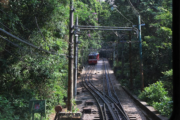 The train to corcovado in rio de janeiro, brazil