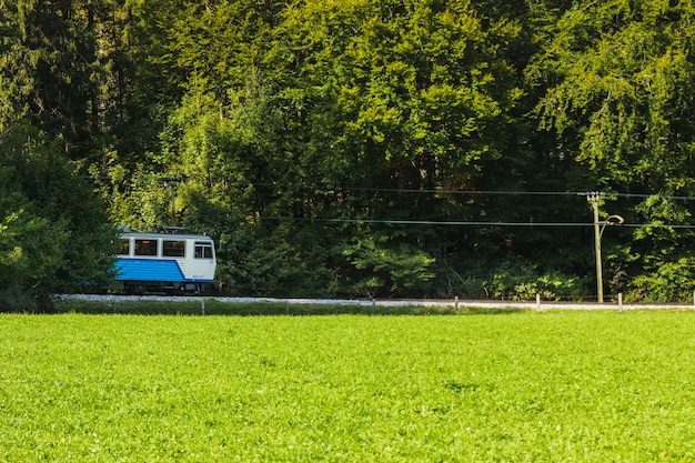 Train crossing the forest of a green valley