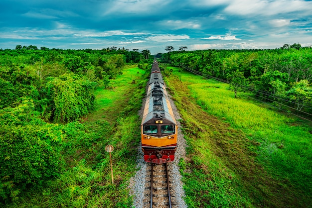 Train on railway transportation in forest and color of sunset