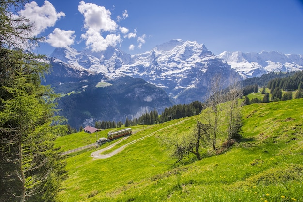 The train runs through a beautiful landscape in the swiss alps