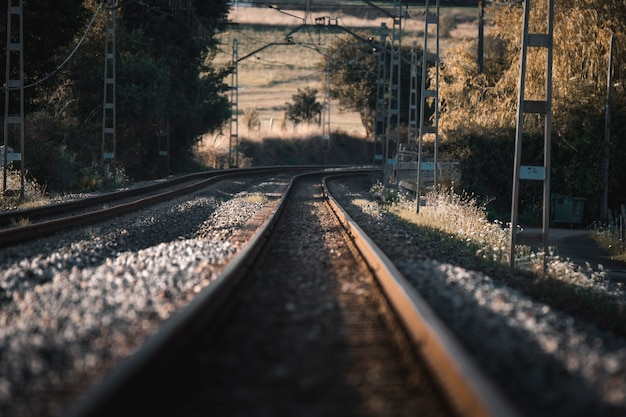 Train tracks going to the horizon in the sunset